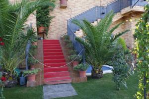 jardin89-1